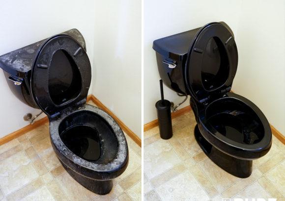 Bellevue Home Cleaning Black Toilet