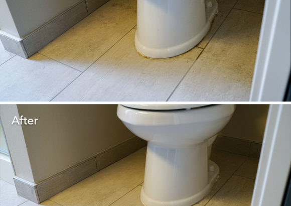 Seattle Home Cleaning Toilet